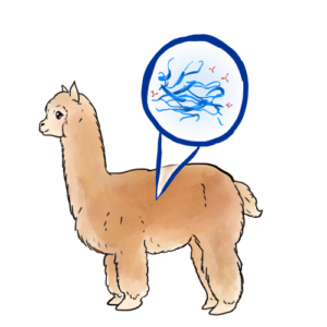 Alpaca Nanobodies